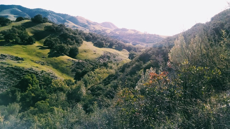 Yoga, Hiking + Nature Retreat to Sagrada Wellness