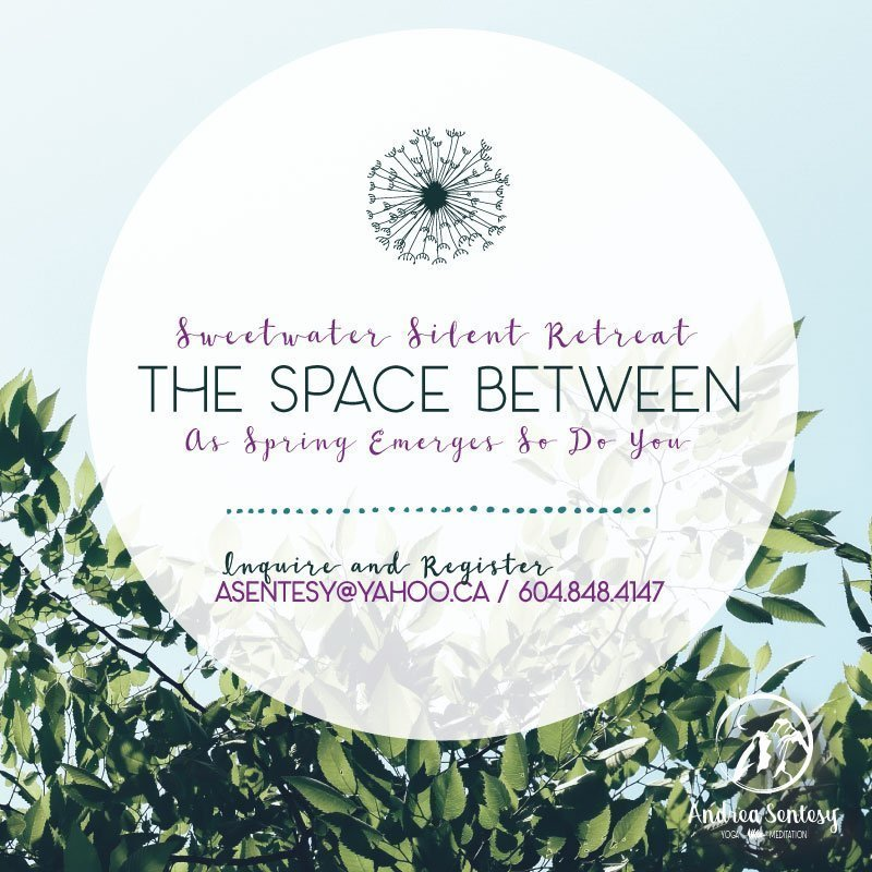 The Space Between: Sweetwater Silent Retreat