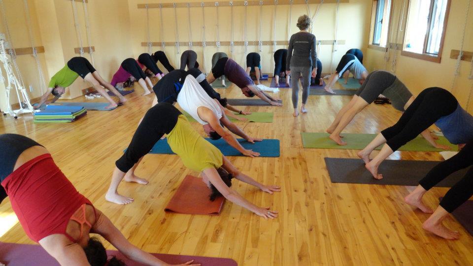 Iyengar Yoga Foundations: 6 Week Series
