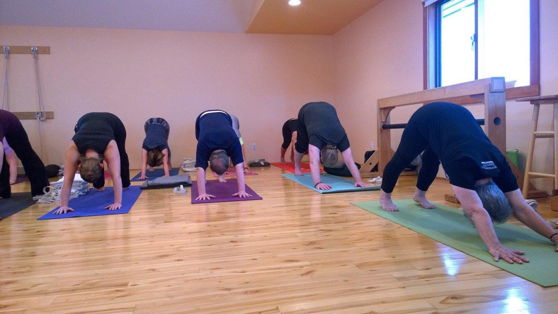 Free Beginner Iyengar Yoga Class