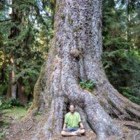 Peaceful Mountain Yoga + Hiking Retreat