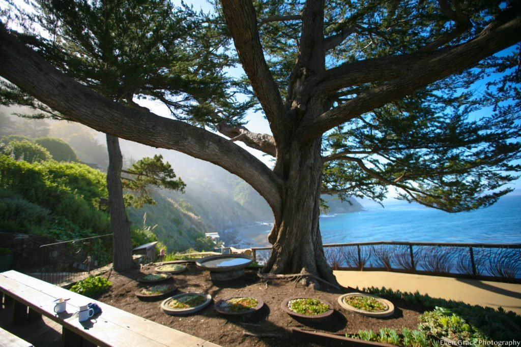 Esalen Yoga Gathering: Ritual and Rhythm Week