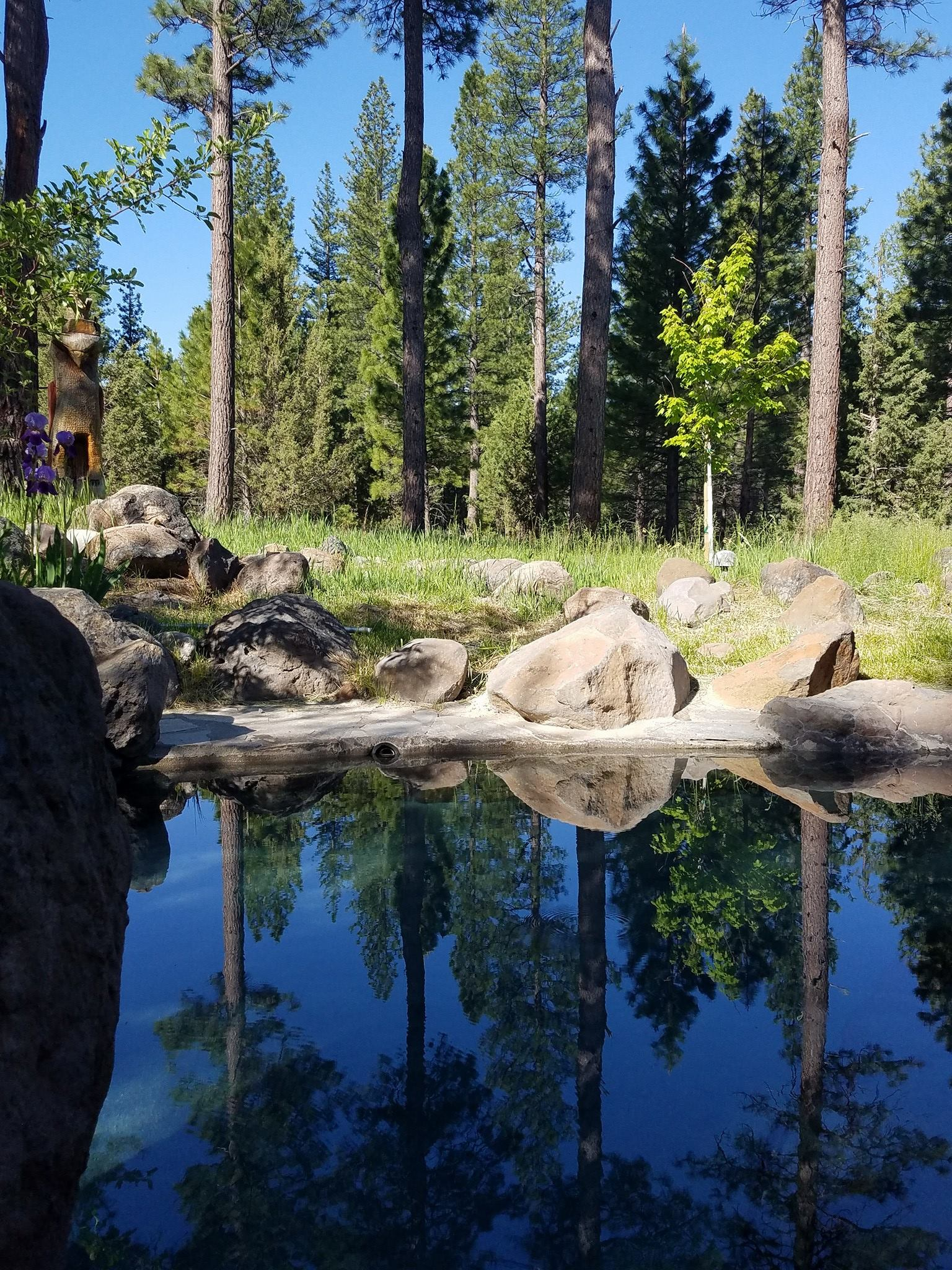 Springtime Yoga and Meditation Retreat at Sierra Hot Springs with Christie Pitko