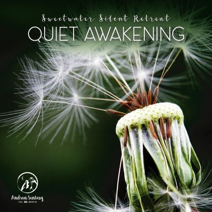 Quiet Awakening : Sweetwater Silent Retreat with Andrea Sentesy < Head + Heart