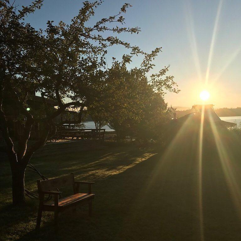 Hollyhock Cortes Island BC