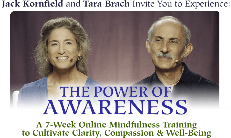 Online Course with Tara Bracht + Jack Kornfield: The Power of Awareness