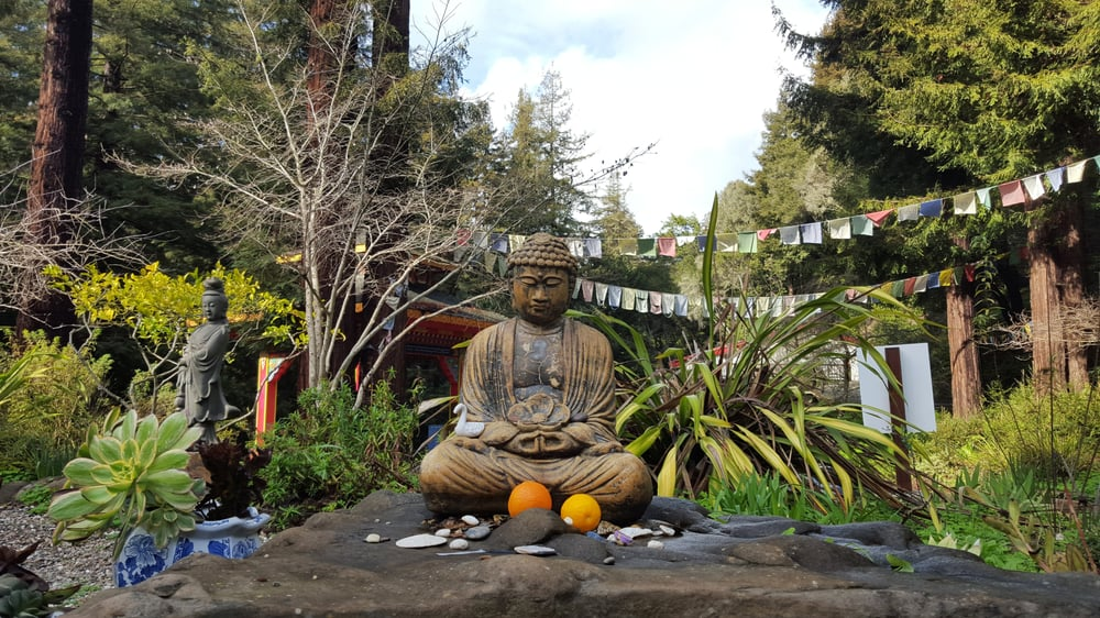 Yoga and Meditation Retreat, Santa Cruz Mountains, California // Head + Heart
