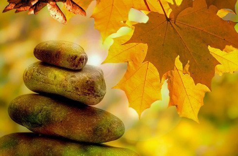 Fall Equinox Yin Yoga plus Sound bath with Nancy Lea < Head + heart