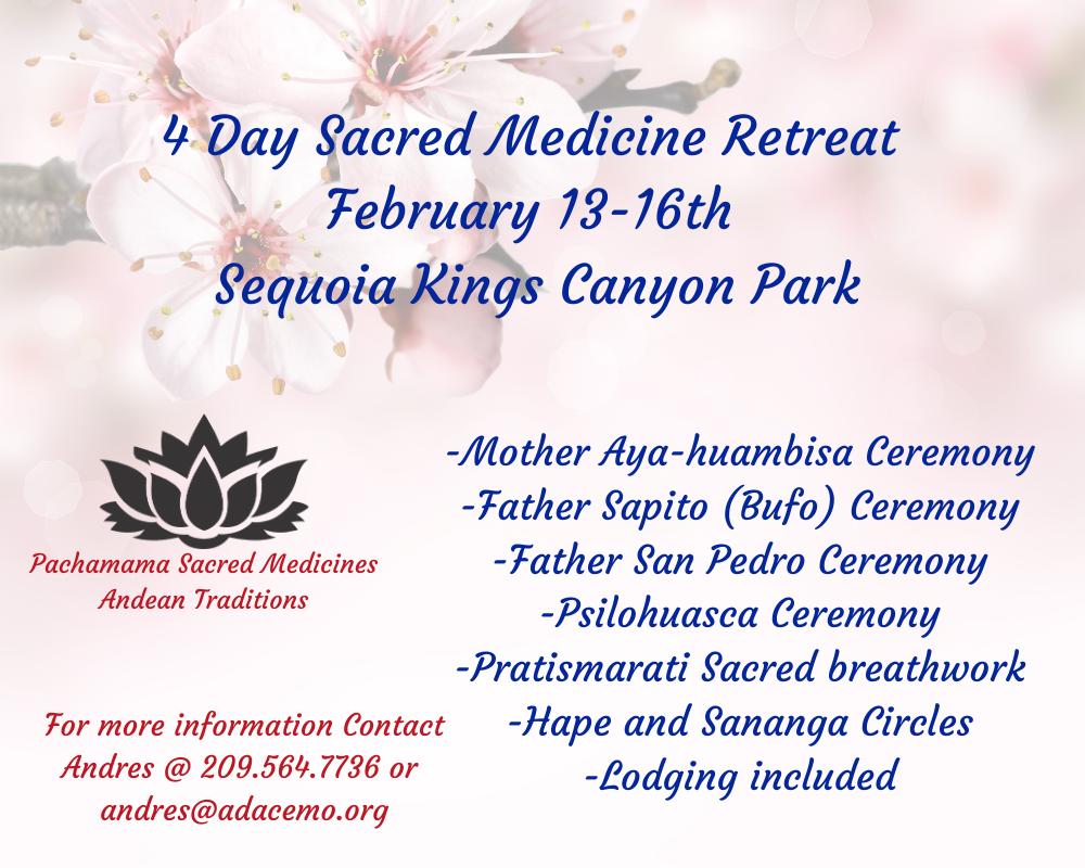 4 Day Sacred Medicine Retreat (Ayahuambisa, San Pedro, Psilocybin, Bufohuasca)